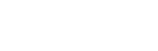Telelink Business Services Group